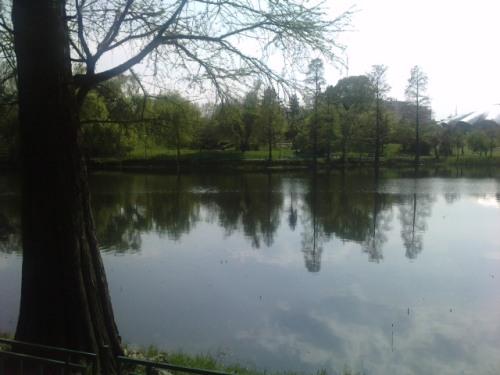 Lacul din Parcul Circului