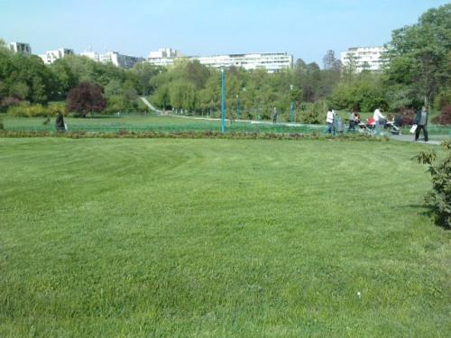 Spatiu verde din Parcul Circului