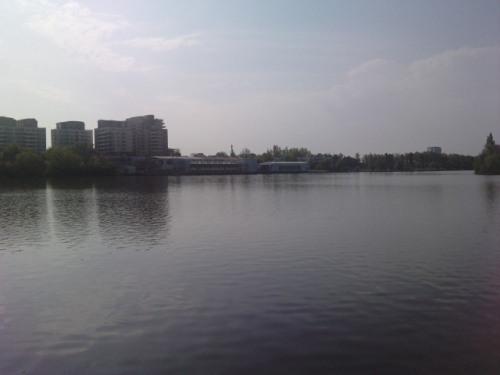 Lacul Tei