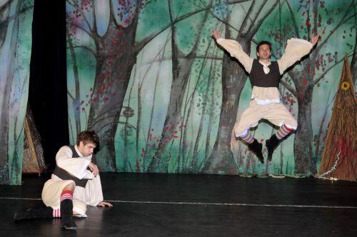 Baletul de buzunar MINUNITA si VRAJITOAREA Opera Comica pentru Copii
