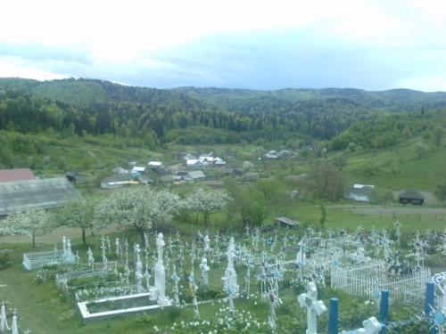 In cimitir